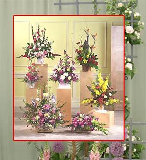 cursos manualidades clases floresarte floral curso de cajascajas tarjetas artesanalesmicrocultivo dibujo pintura oleo fotografiatextiles - Composiciones Florales
